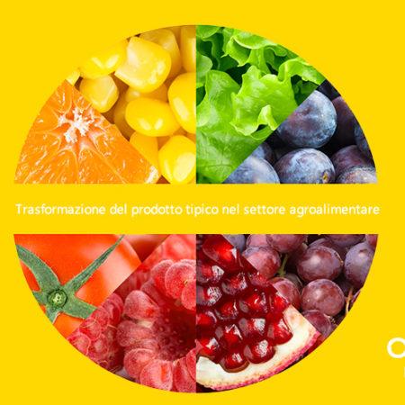 Trasformazione del prodotto tipico nel settore agroalimentare